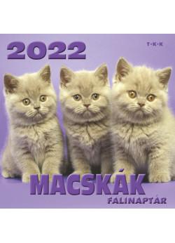 Falinaptár Macskák 2022