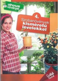 Szobanövények kisméretű levelekkel - Otthonunk növényei