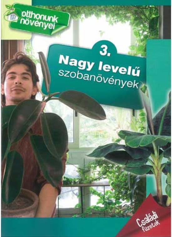 Nagy levelű szobanövények - Otthonunk növényei