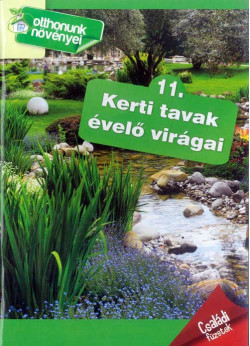 Kerti tavak évelő virágai - Otthonunk növényei
